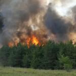 Пожары с сайта vl.aif.ru